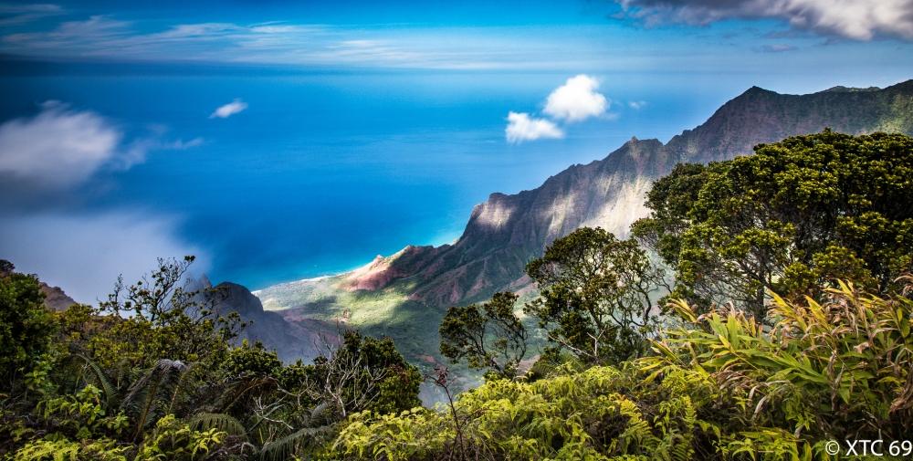 Hawaii-4297