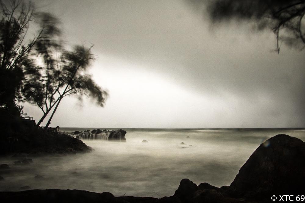 Hawaii-4896