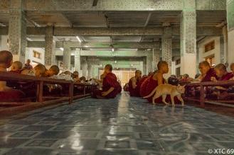 Myanmar-6113