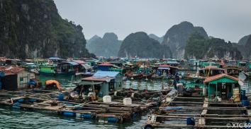 Hanoi und Hongkong--8