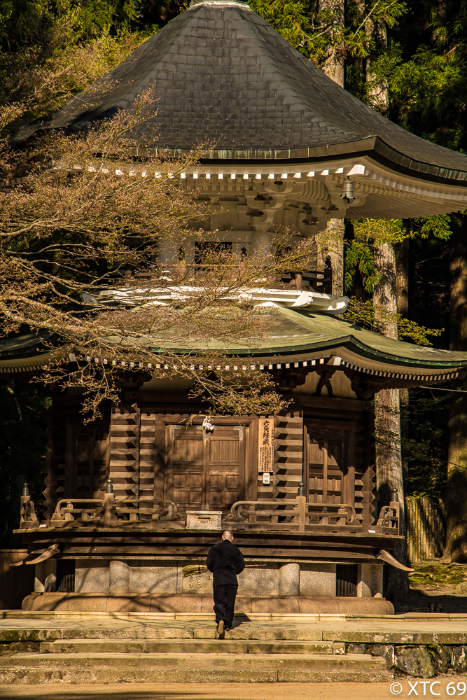 Japan Kyosan-9872