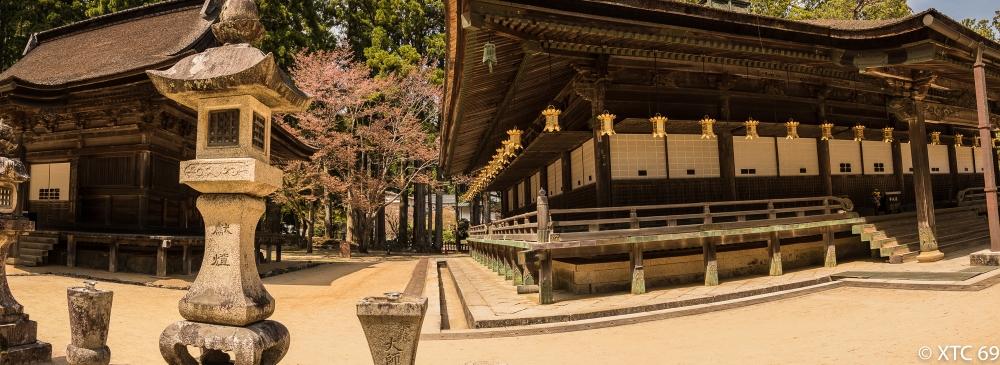 Japan Kyosan-